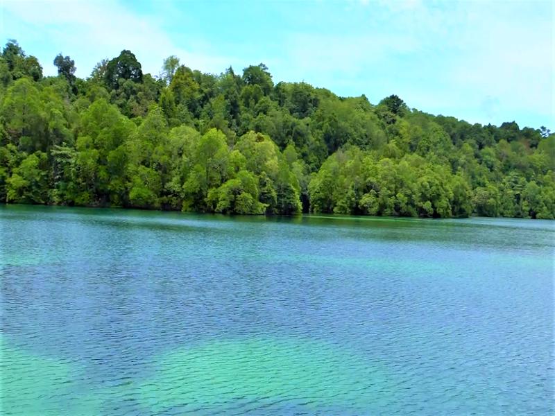 Bermain Bersama Ubur-ubur di Danau Kakaban | Indonesia Traveler