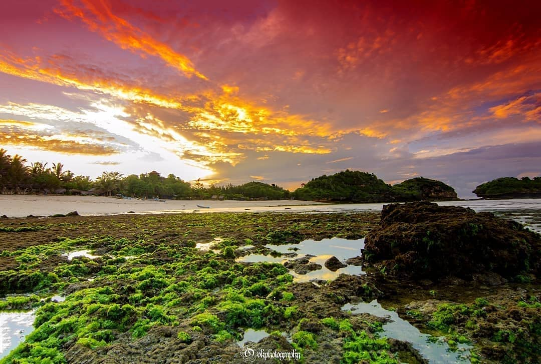 photo by pacitan.story