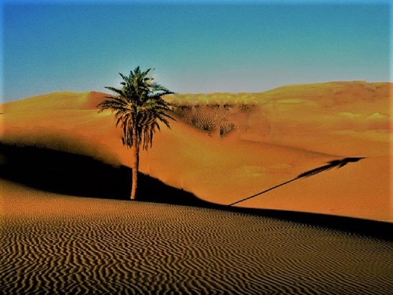 Vietnam, sand dunes, indonesiatraveler.id, indonesia traveler