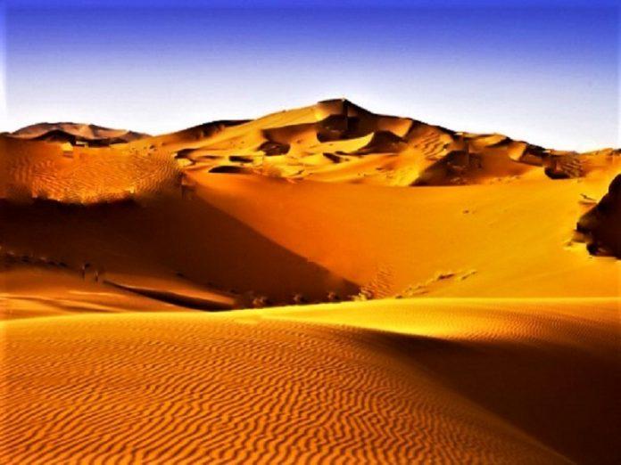 Vietnam, sand dunes