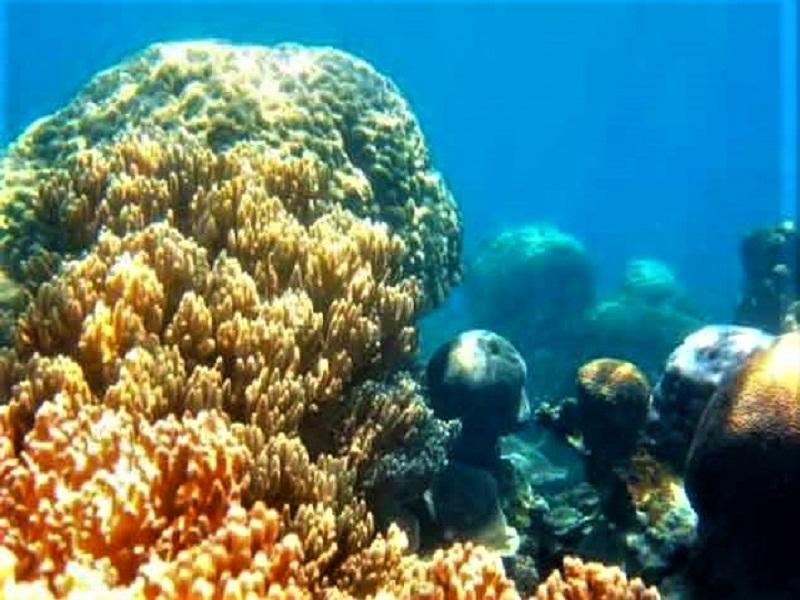 Belitung, Pulau Memperak