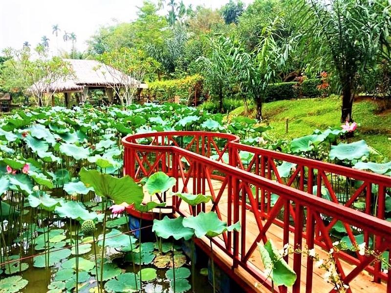 Medan, The Le Hu Garden1