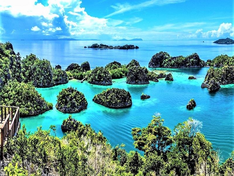 Mengintip Kekayaan Alam Papua Indonesia Traveler