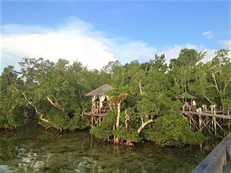 Papua, Taman Nasional Teluk Cendrawasih