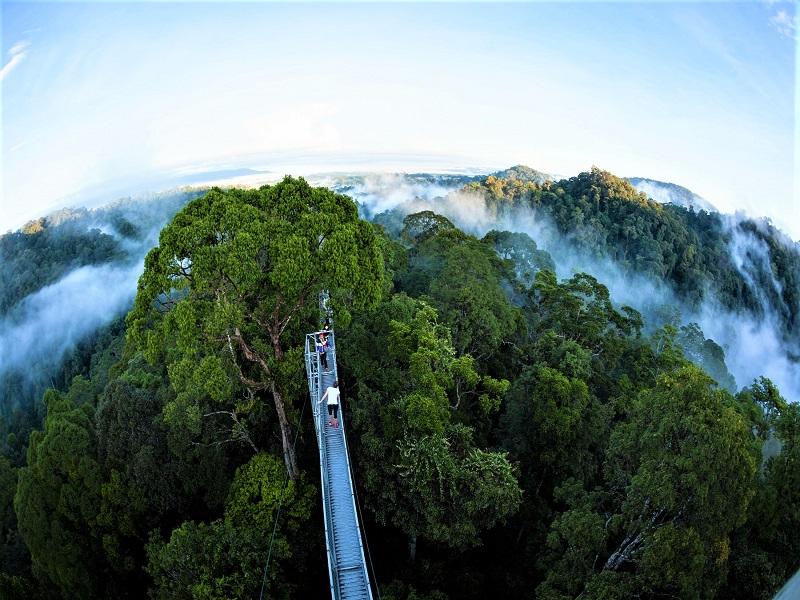 Brunei, Taman Nasional Ulu Temburong