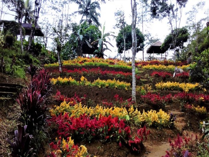 Taman Bunga Goa Kiskendo