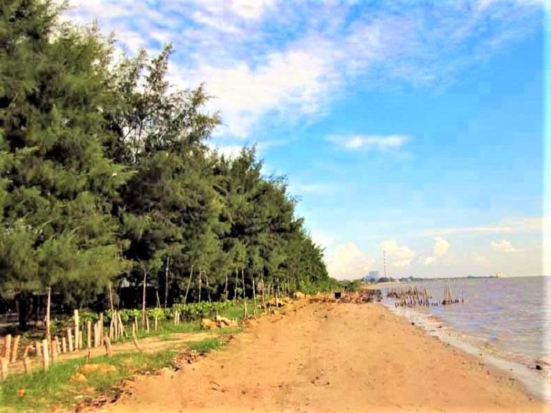 Tuban, Pantai Cemara