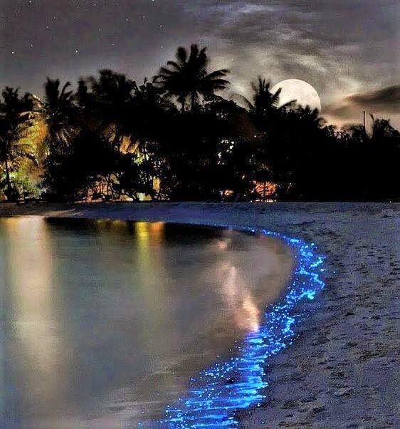 Pulau Mudhdhoo / Pantai Vaadhoo