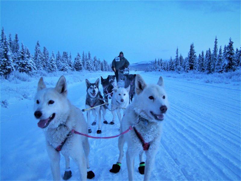 Hovden, Norwegia, Wisata Hovden, Wisata Norwegia, Destinasi wisata ke Norwegia