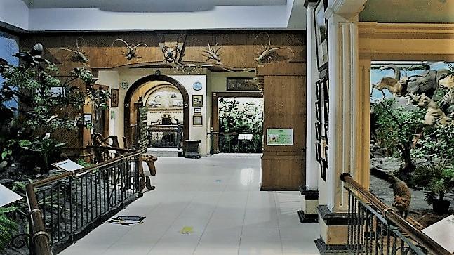Rahmat International Wildlife Museum and Galery