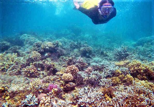 4 Destinasi Wisata di Manado