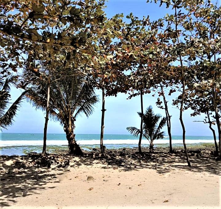 Pesona Memikat di Pantai Rancabuaya Garut