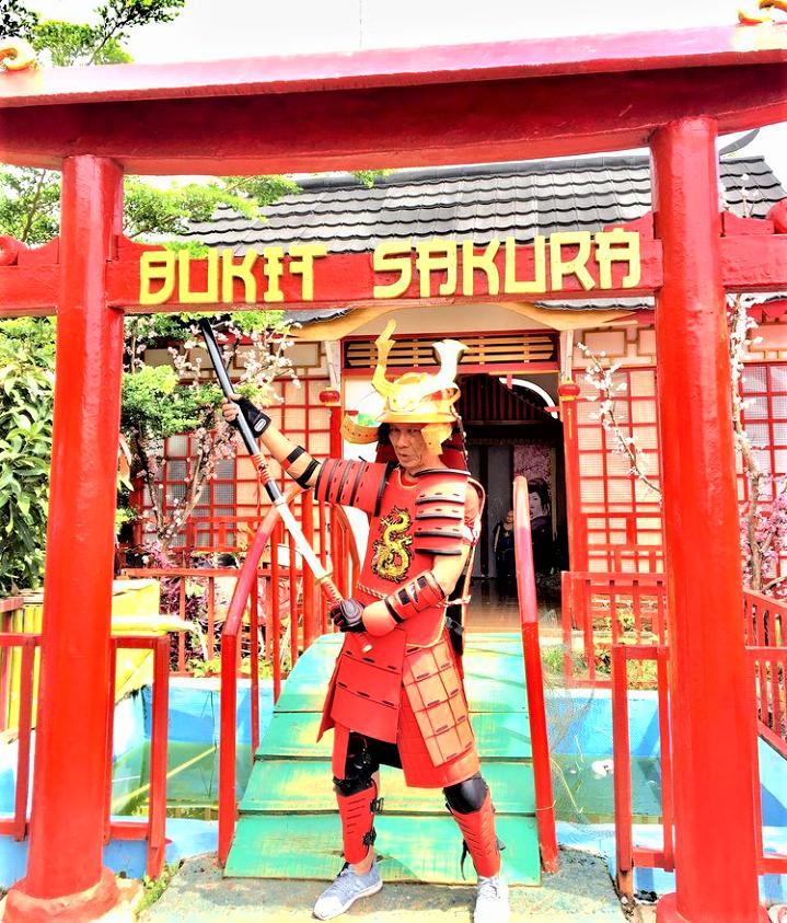 Bukit Sakura Lampung, Wisata Kekinian yang Makin Mengasyikkan!