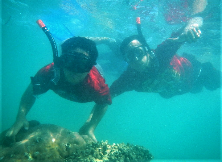 Sensasi Keindahan di Pulau Pari (Pari Island)