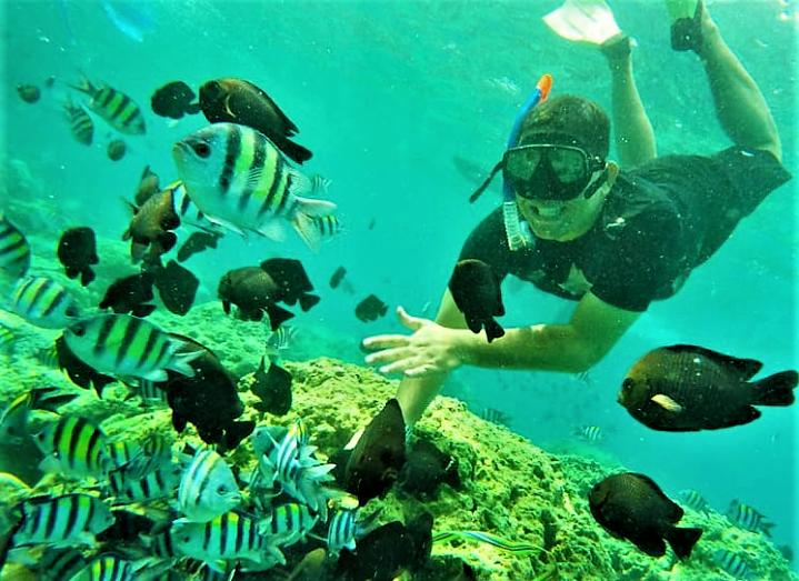 Taman Laut Terfavorit di Indonesia