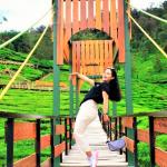 Bandung, Bukit Jamur Ciwidey1, Photo by @bukitjamurciwidey