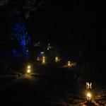 Bogor, Kebun Raya Bogor3, Photo by @glowkebunraya