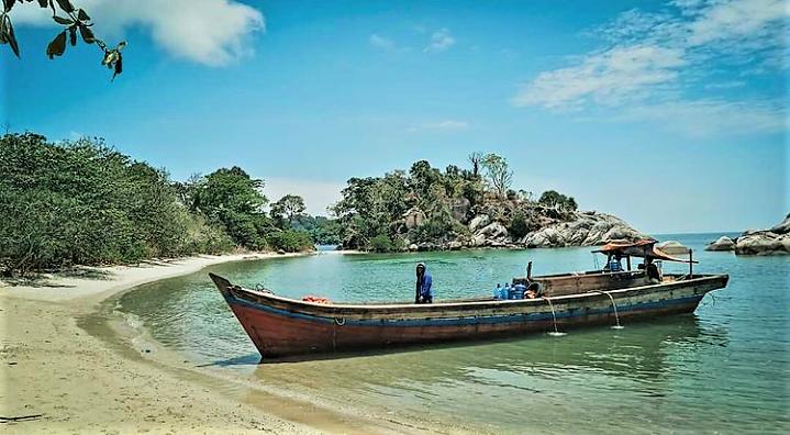 Sensasi yang Memikat di Pulau Penyu