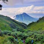 Jawa Tengah, Taman Nasional Gunung Merbabu – ahmaddfajrii_