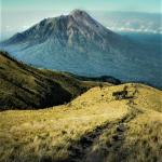 Jawa Tengah, Taman Nasional Gunung Merbabu1