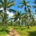 Jawa Timur, Pantai Rajegwesi2