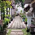 Yogyakarta, Rumah Pesik2